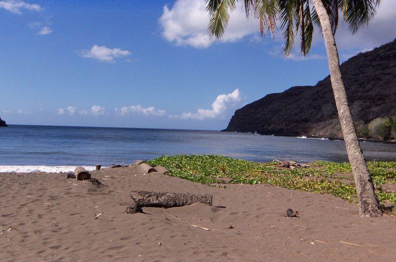 Beach hanamenu2