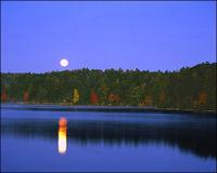 Walden_pond